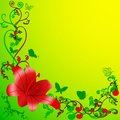 Red lili green background Royalty Free Stock Photos