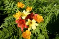 Red lilies , yellow daylilies and frying Royalty Free Stock Photo
