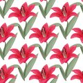Red lily bright background. Summer colors seamless pattern.