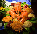 Red lobster platter serving table close up Stock Photos