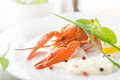 Red lobster on a white plate with lemon and greens Stock Images