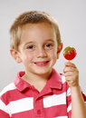 Red lollypop. Royalty Free Stock Photos