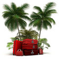 Red luggage in the tropics Stock Photo