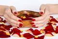 Red manicure and rose petals Stock Image