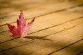 Red maple leaf on wood