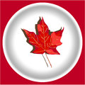 Red maple leave like cana da logo on white plate