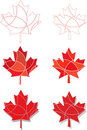 Red Maple leaves Royalty Free Stock Photos
