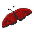 Red moth on white background. Vector illustration