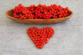 Red mountain ash in a wooden support and heart from mountain ash berries the ripened laid out Stock Photo