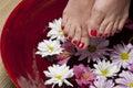 Red nail polish Royalty Free Stock Photo