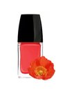 Red nail polish and poppy flower isolated on white Royalty Free Stock Image