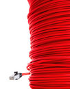 Red network cable Stock Image