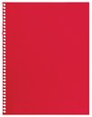 Red note paper, single sheet of blank torn jotter notebook background texture isolated Royalty Free Stock Photo
