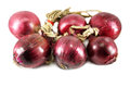 Red onions isolated on white Royalty Free Stock Photo