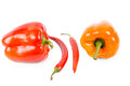 Red orange sweet bell peppers two red hot chilli peppers isolated white use as seasoning flavouring salads cooking Stock Photo