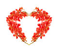 Red orchid heart Royalty Free Stock Photo