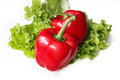 Red paprika and lettuce Royalty Free Stock Photo