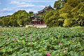 Red Pavilion Lotus Garden Summer Palace Park Beijing China Royalty Free Stock Photo