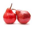 Red pear on white background Stock Image