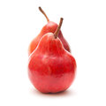 Red pear on white background Stock Photography