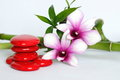 Red pebbles arranged in zen lifestyle with two bicoloured orchids on the right side of the twisted bamboo set at the back all on a Royalty Free Stock Photo