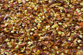 Red Pepper Flakes Stock Images