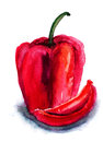 Red pepper watercolor illustration of Royalty Free Stock Photos