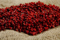 Red peppercorns close up Royalty Free Stock Photos
