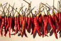 Red Peppers Hanging To Dry In ...