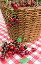 Red picnic cloth with cherry Stock Photos
