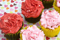 Red and Pink Cupcakes Stock Images
