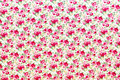 Red and pink roses background texture Royalty Free Stock Photos