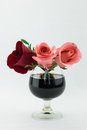 Red and pink roses in glass of wine Royalty Free Stock Photo