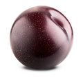 Red plum fruit Royalty Free Stock Photo