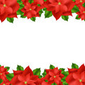 Red Poinsettia Border Royalty Free Stock Photo