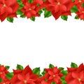 Red Poinsettia Border Royalty Free Stock Photo