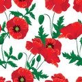 Red poppies seamless background colorfull Royalty Free Stock Photography