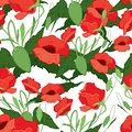 Red poppies seamless vector illustration of background Stock Image