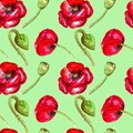 Red poppies watercolor seamless pattern on green background hand drawing
