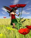 Red Poppy Fairy with Cornfield Background Stock Photos