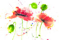 Red poppy flowers modern art style watercolor painting