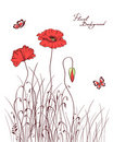 Red poppy & grass Stock Photos