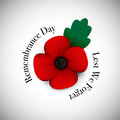 Red poppy remembrance day Royalty Free Stock Photo