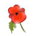 Red poppy vector a single remembrance day illustration Stock Photos