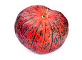 Red pumpkin Stock Photography