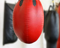 Red punching bag beat up a hangs in a gym near white wall among other bags blurred background Royalty Free Stock Image