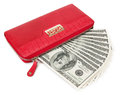 Red purse with dollars isolated on white Stock Images