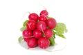 Red raddish Stock Images