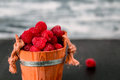 Red raspberries in a basket on black wooden background. Close up. Royalty Free Stock Photo