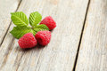 Red raspberries Royalty Free Stock Photo